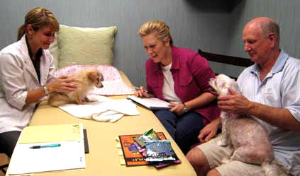 acupuncture treatments for dogs with cushing disease and kidney disease